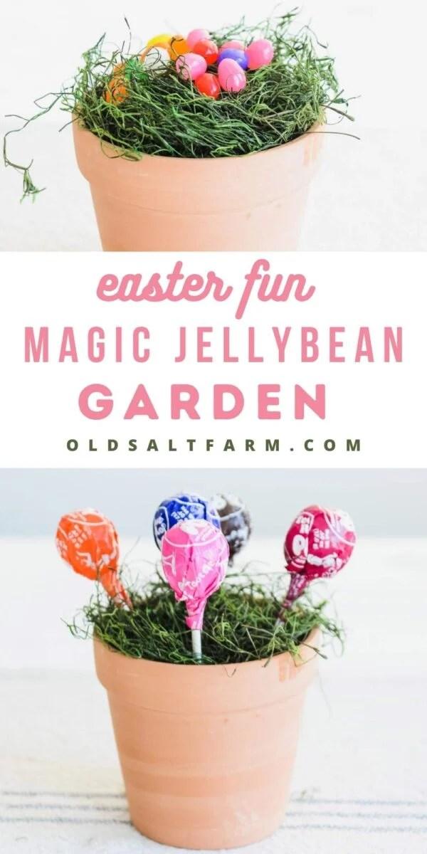 Magic Lollipop & Jellybean Garden