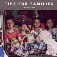 Drive-in Movie Tips for Families