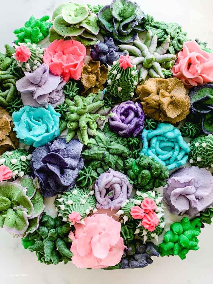 Succulent and Cactus Cake Fiesta