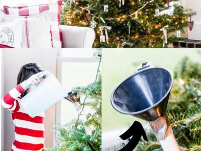 Easy Way to Water a Christmas Tree