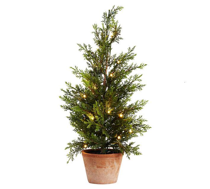 Mini Potted Lit Christmas Tree