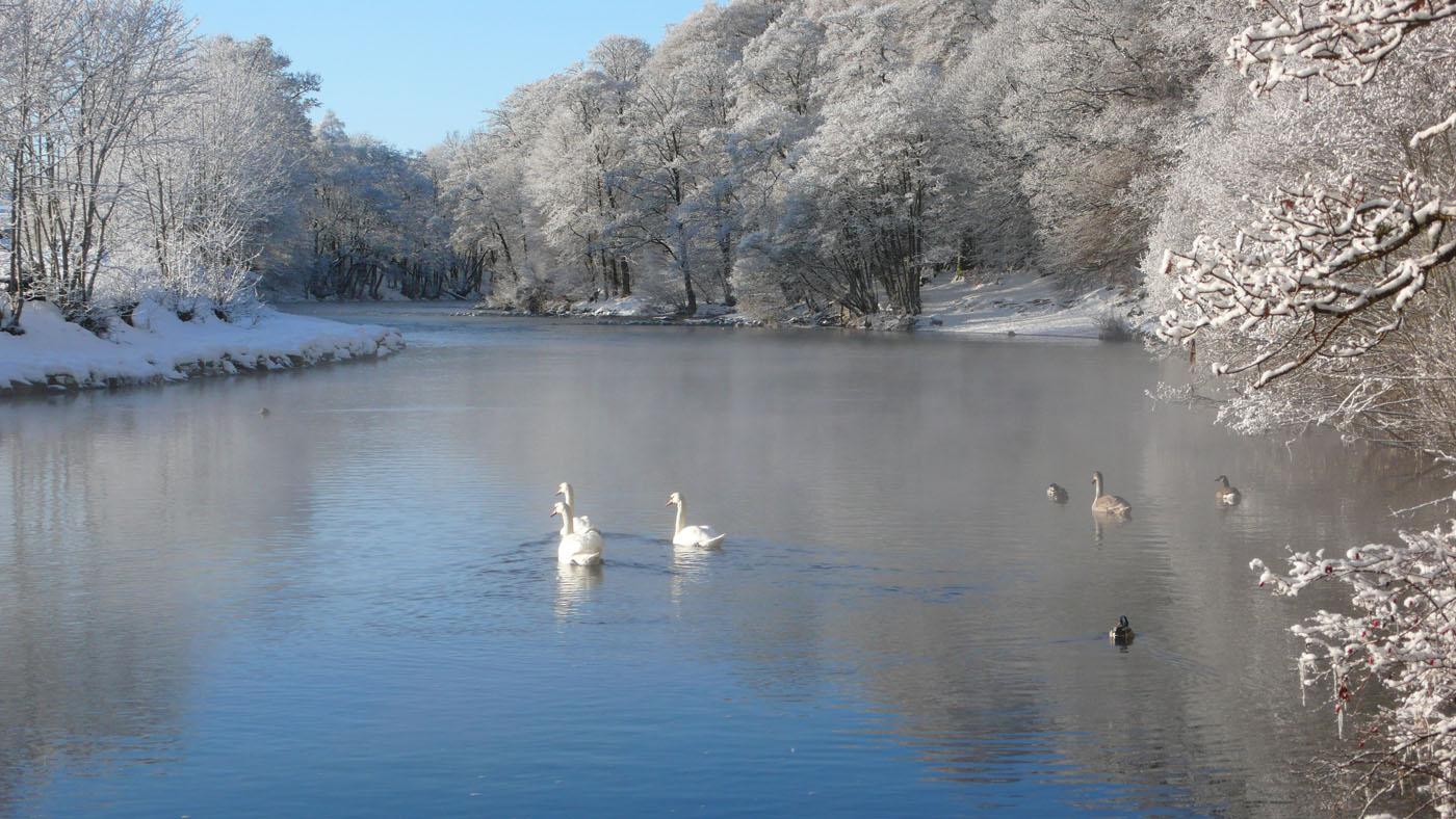 River Earn in Winter