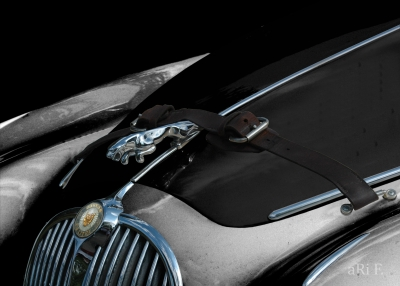 Jaguar Mark II Motorhaube in black & grey 3