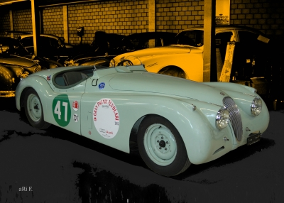 Jaguar XK 120 Roadster for racing Poster