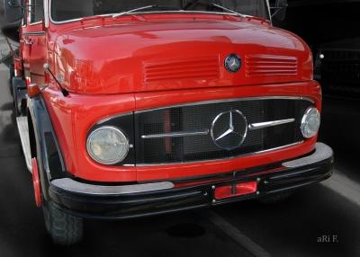 Mercedes-Benz Typ 1113 Kurzhauber Poster (Originalfarbe)