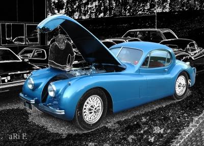 Jaguar XK 120 FHC Poster kaufen