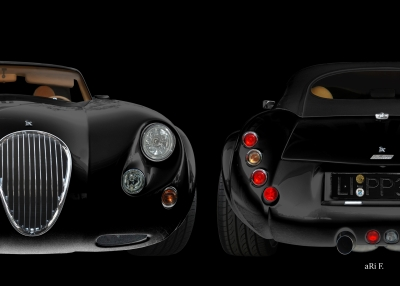 Wiesmann Roadster MF3 in black & black