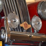 MG Midget TF, Detailansicht Kühlergrill mit badge bar auf Stoßfänger