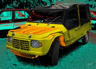 Citroën Méhari kaufen