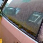 Porsche 924 Seitenfenster