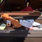 Citroen GSA mit Wackeldackel auf der Hutablage