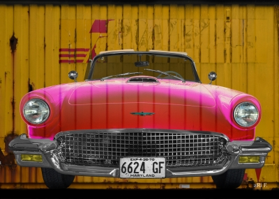 Ford Thunderbird aRt Car Poster by aRi F.