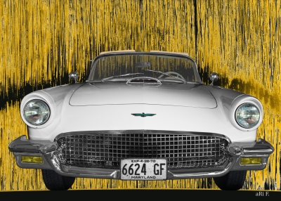 Ford Thunderbird aRt Car by aRi F.