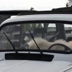 Renault 4 Frontscheibe