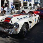 Austin-Healey am Sonntag im Rallye-Kleid