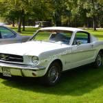 Ford Shelby nur 500 Stück gebaut Stück