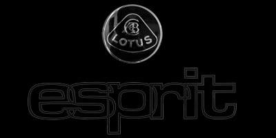 Logo Lotus Esprit mit darunter aufgespritztem Schriftzug esprit