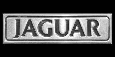 Logo Jaguar XJ Series 3 Souvereign 4.2 am Heck