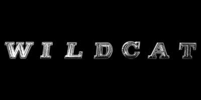 Logo Buick Wildcat Serie II (1965–1970)