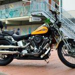 Harley-Davidson Softail Springer, Baujahr 2000