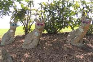 grapevine-milano-della-and-giovanni-the-3-foxes-dscn1741
