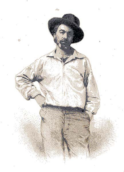 Walt Whitman and the Civil War