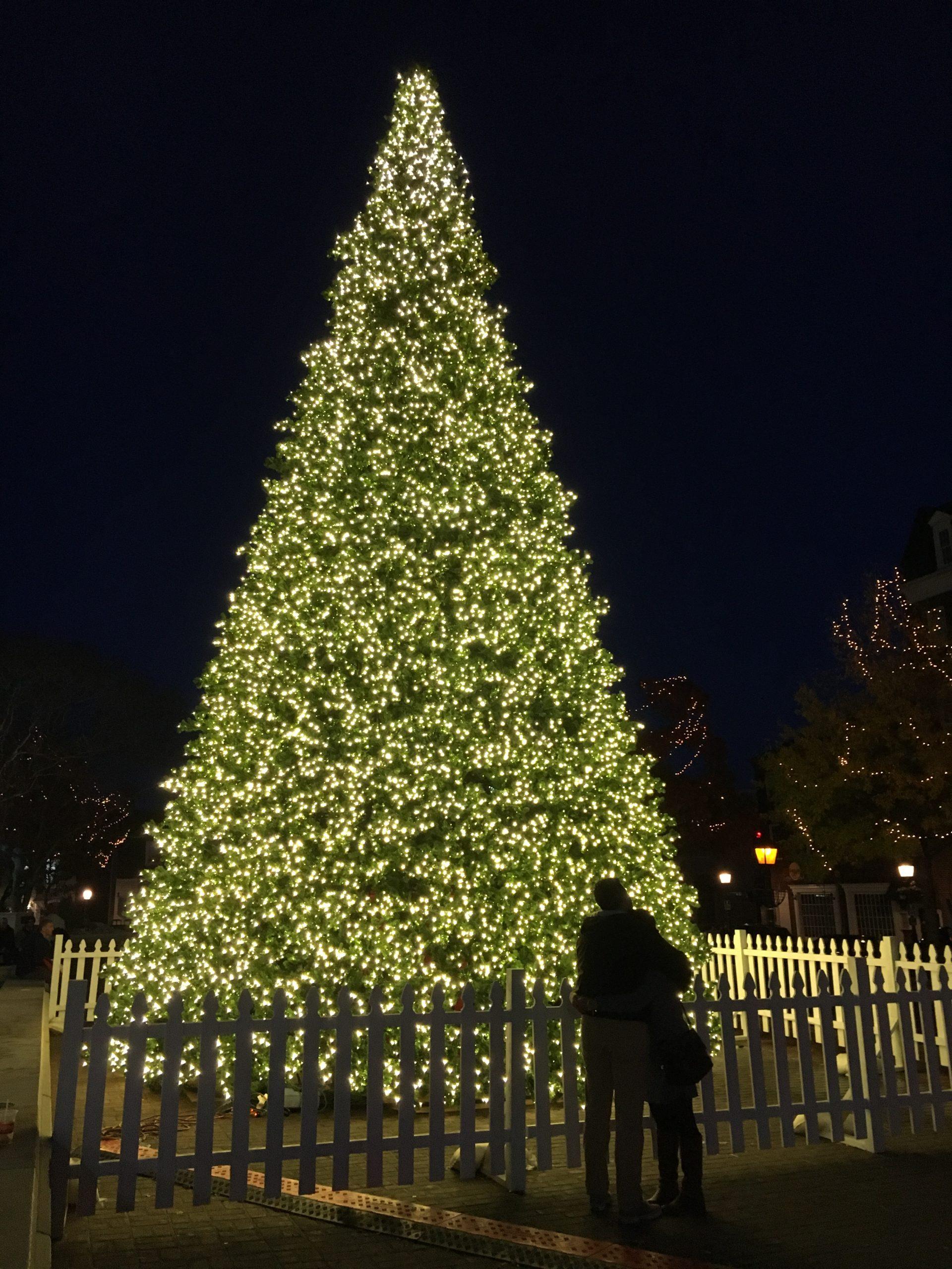 December Alexandria Calendar of Events