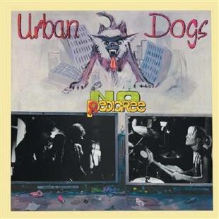 Urban-Dogs_No-Pedigree