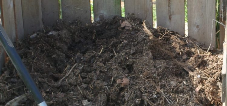 How To Make Great Compost – Fast!