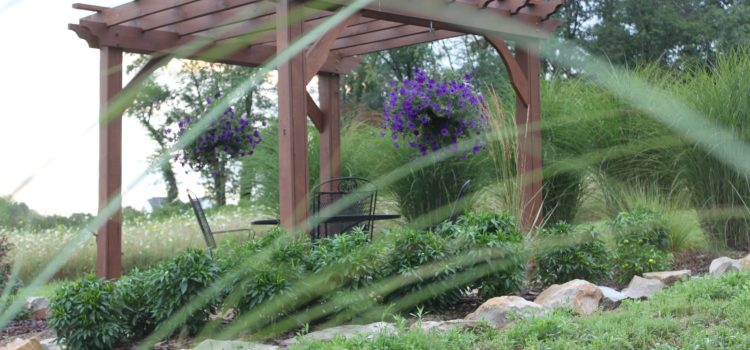 The Secrets To Building A Beautiful Pergola Without Breaking The Bank