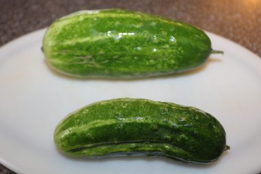 sweet pickle