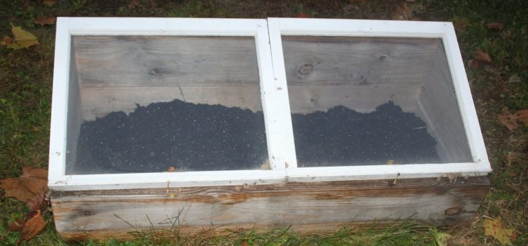 Using A Cold Frame To Grow Fresh All Year