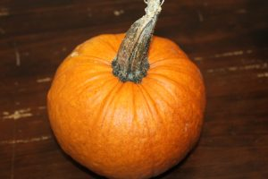 One of the pie pumpkins from the farm. Easy to grow if you have a lot of room.