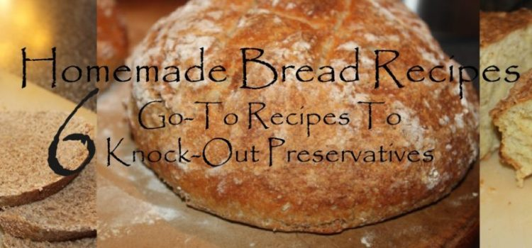 Homemade Bread – 6 Go To Bread Recipes To Eliminate Preservatives