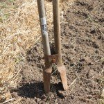 My trusty old post hole digger is the perfect planting tool. This one was my dad's - so it has a little special meaing