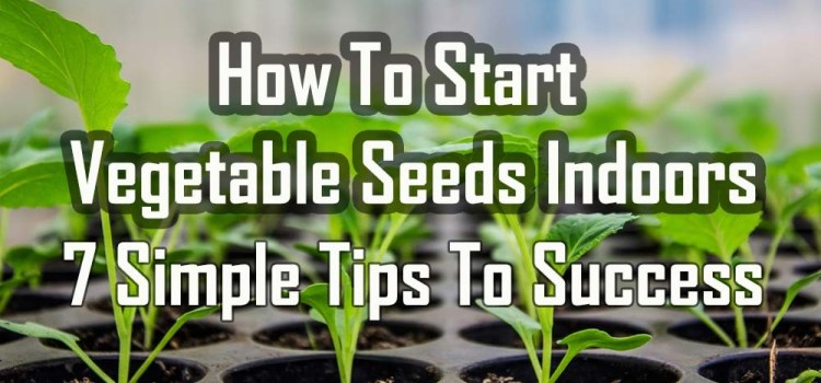 How To Start Vegetable Seeds Indoors – 7 Simple Tips To Big Success!