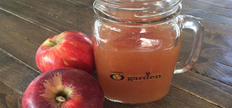 Homemade Apple Cider Recipe – Ready In Just Minutes!