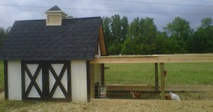 The Coop at the farm with the framing for their outdoor run in place.