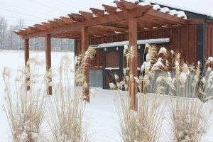 The bees should be nice and warm in their hive - even when the farm is covered in a fresh blanket of snow.