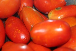 The Amish Paste Tomato is an excellent choice for those wanting to make sauce, salsa or ketchup.