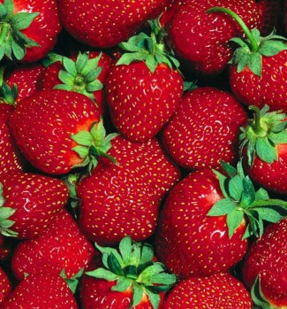Is there anything more beautiful that fresh strawberries!