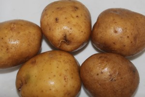Our Yukon gold potatoes grown in our garden makes perfect crispy fries.