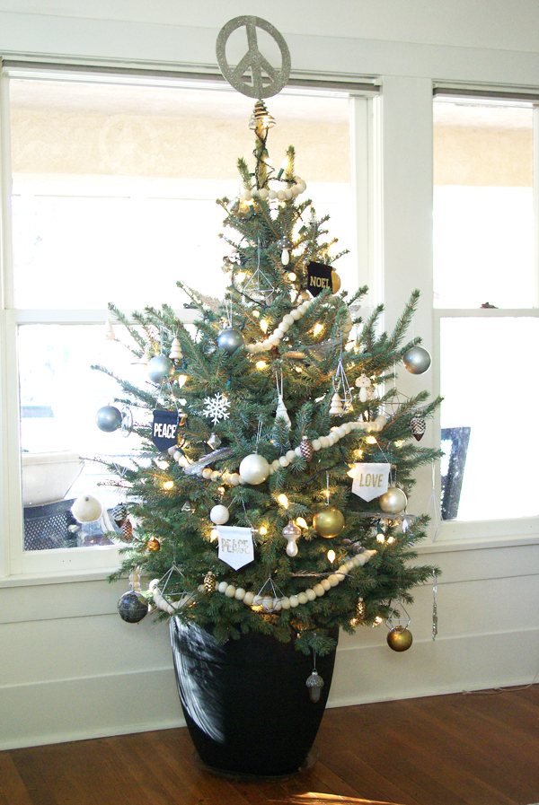 colorado blue spruce potted christmas tree - Potted Christmas Tree