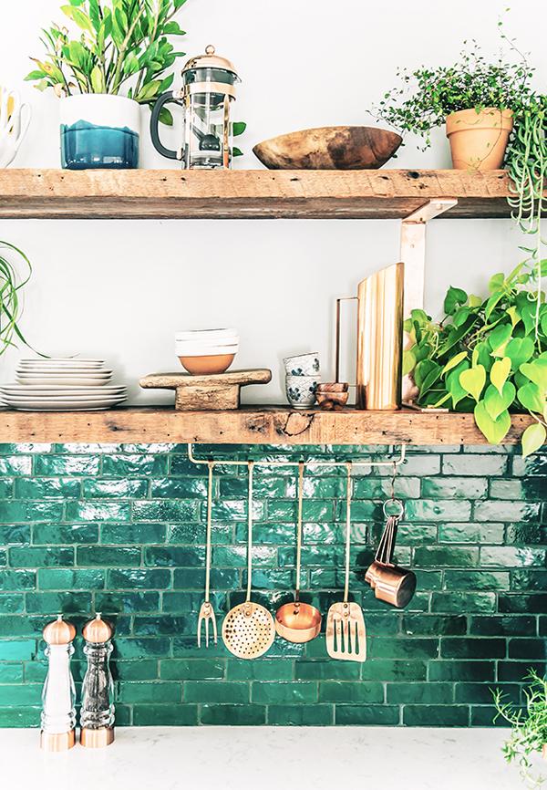 Green Tile Oleander Palm