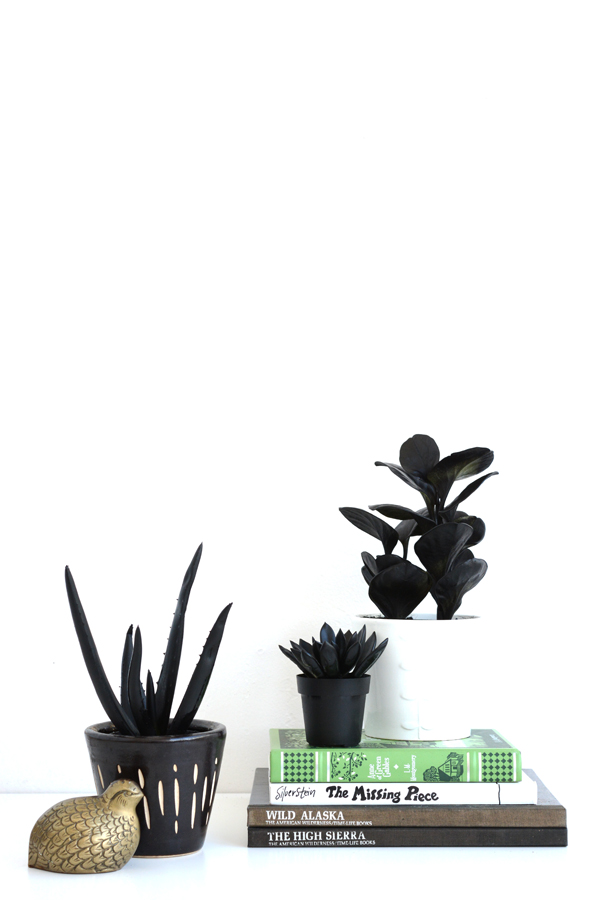 Happy April Fools Day! -paint plants black