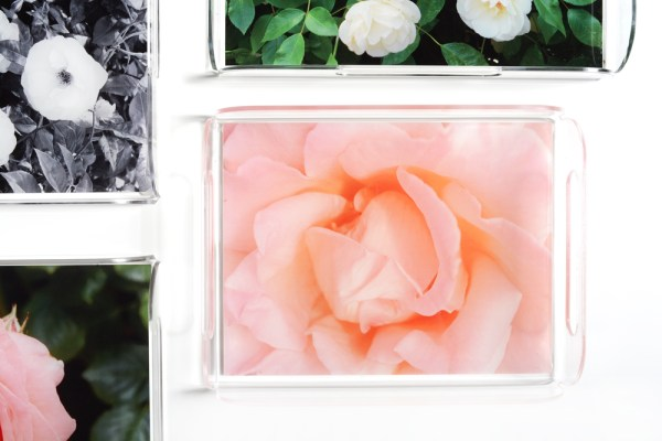 garden rose acrylic trays