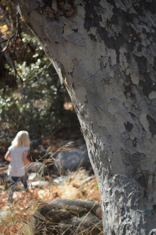 _fall-hike-3