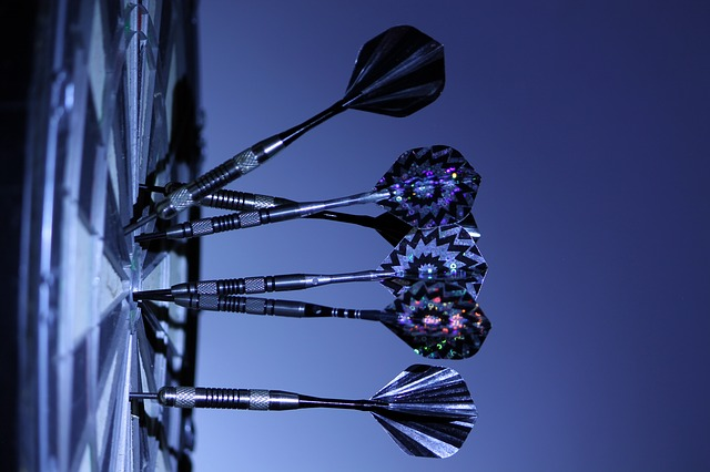 dartpfeile test steeldarts softdarts o-ring Flight