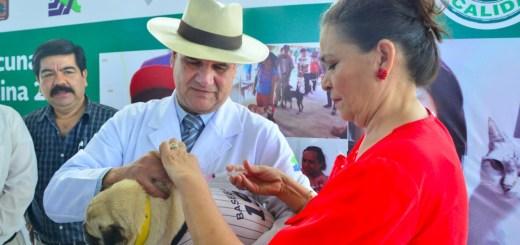 Arranca semana nacional de la vacunación Canina y Felina