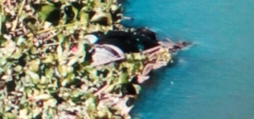 Localizan a un ejecutado en un canal de Alhuate